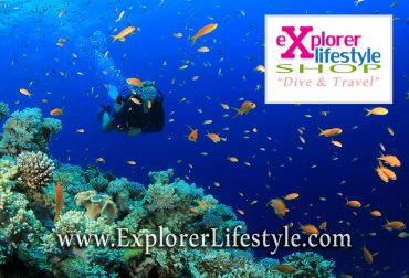 Online Dive Shop in Malaysia